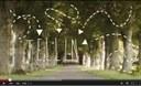 Découvrez la vidéo de promotion du tourisme à Tellin